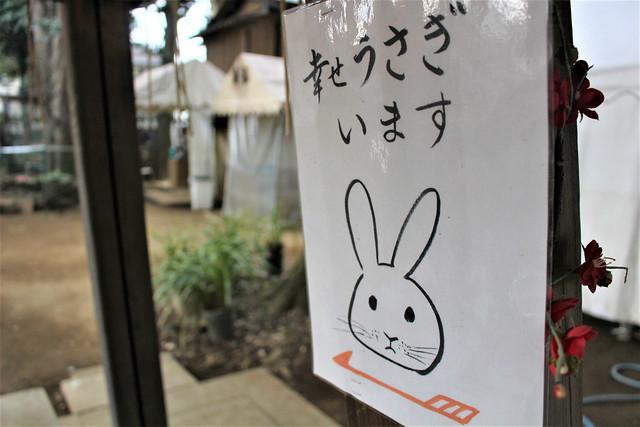 taishidoui-gosyuin014