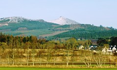 Monymusk with Bennachie in background