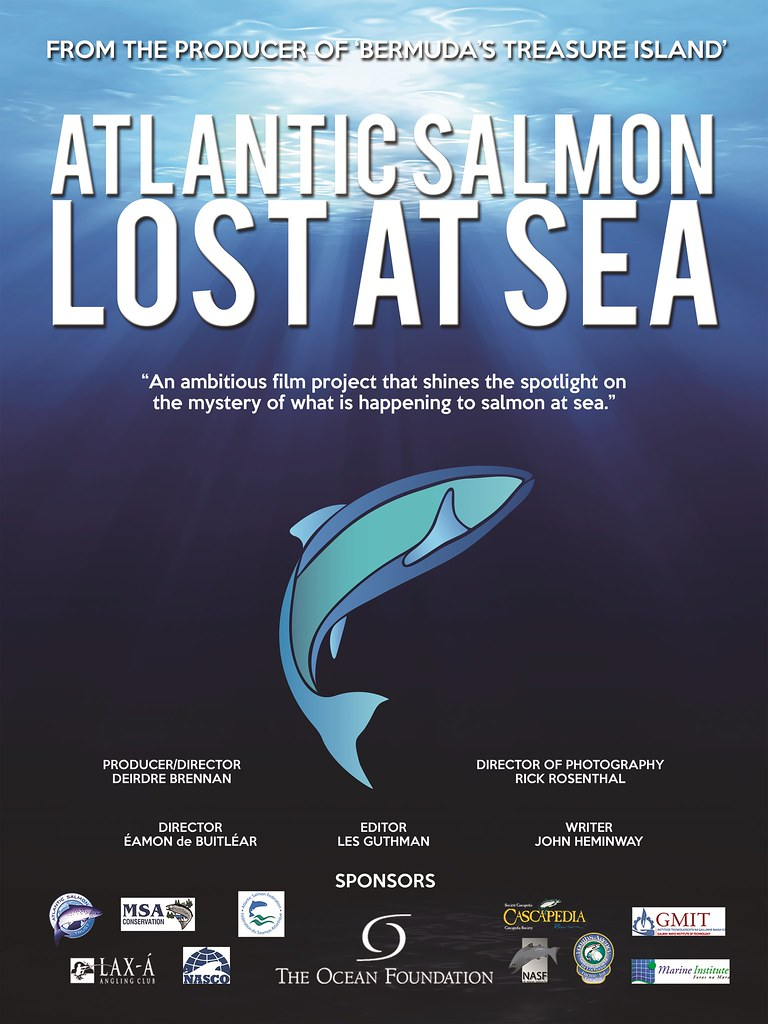 Atlantic Salmon Lost at Sea Poster