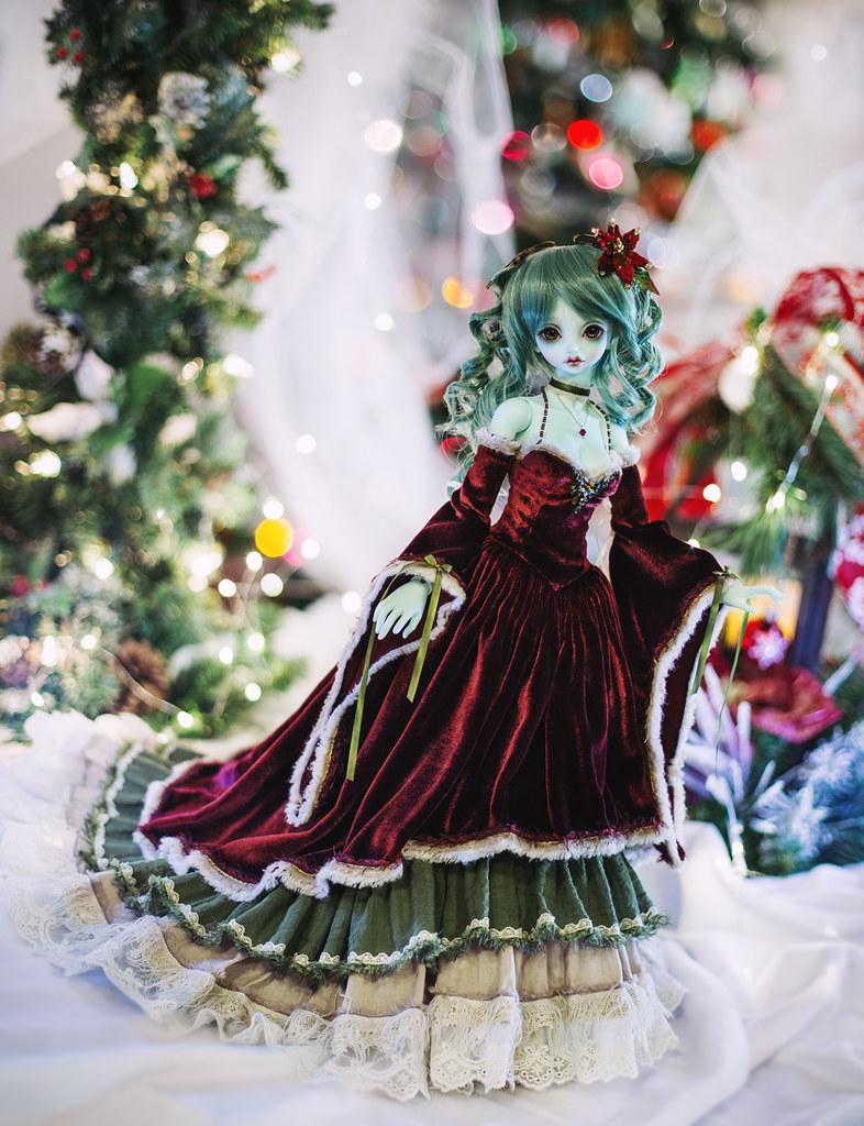 Christmas Plantdellia