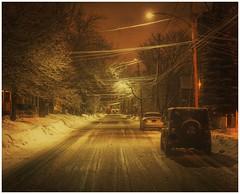 Sticky Snow - Moncton, NB