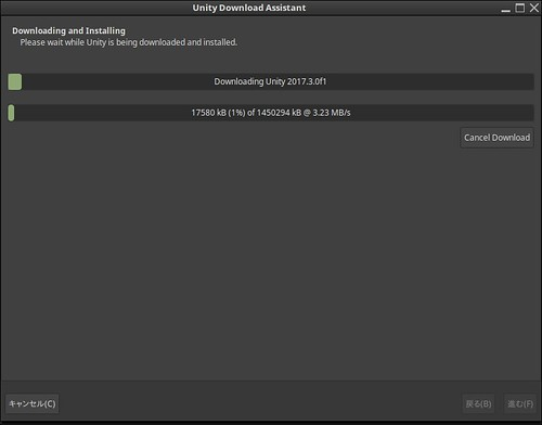 Unity Download Assistant_012