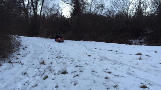 snow sumbate
