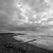F2053 ~ Enjoying the pleasures of the sea... by Teresa Teixeira