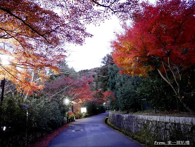 八阪神社48