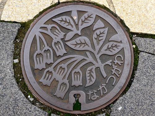 Nakatsugawa Gifu, manhole cover 3 (岐阜県中津川市のマンホール3)