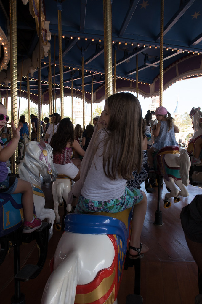The Magic Kingdom Carousel