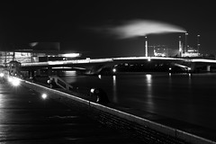 Copenhagen in Black and White - 2018