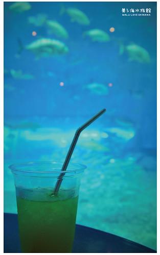 沖繩美麗海水族館-23