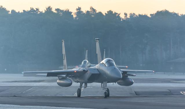 US Air Force McDonnell Douglas F-15C Eagle AF 84-0019 LN / 493rd FS - Grim Reapers