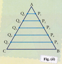 ncert-class-10-maths-lab-manual-ratio-areas-two-similar-triangles-2