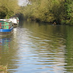 UK - Hertfordshire - Near Watford - Grand Union Canal