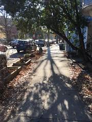Sidewalk shadows, Florida Avenue near R Street NW, Washington, D.C.