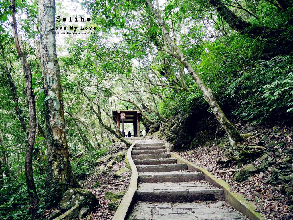 新北三峽一日遊踏青景點推薦滿月圓森林遊樂區 (42)