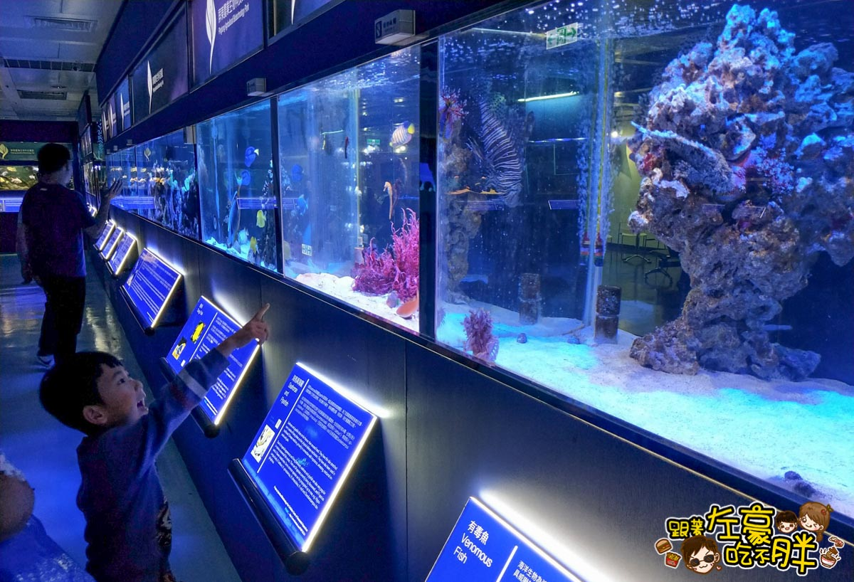 屏東生技園區國際級水族展示廳-20