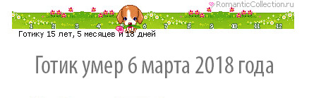 2018-03-07_12-08-02