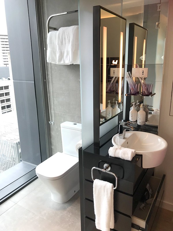 Wash basin and toilet in a gorgeous space