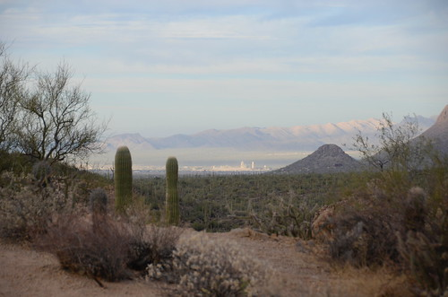 Tucson city view from the forest