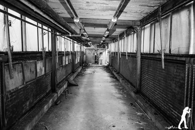 Lost Places: Die Kaue auf dem Zechengelände
