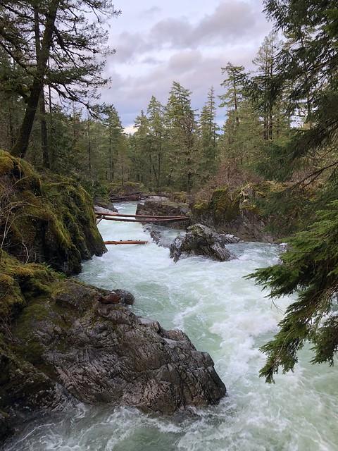 Tofino - Qualicum Falls