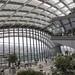 London - Sky Garden