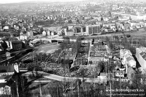 Oslo (5591)