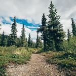 Aspen Flat