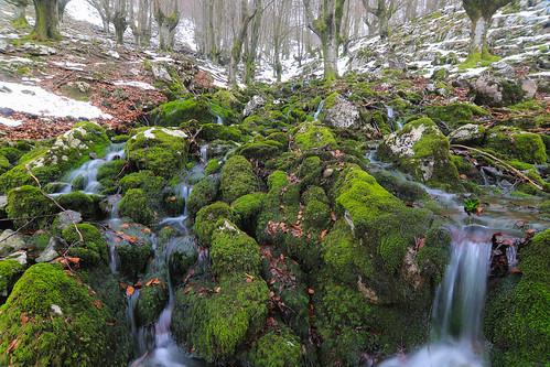Parque Natural de Gorbeia #DePaseoConLarri #Flickr -58