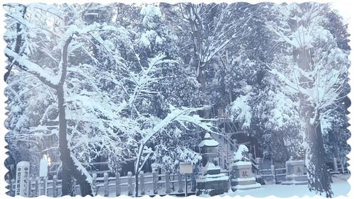 Snow Day 2-2