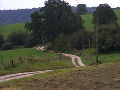 20070831 12010 0707 Jakobus Wiese Weg Bäume