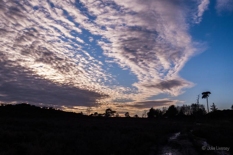 Canford Heath skies