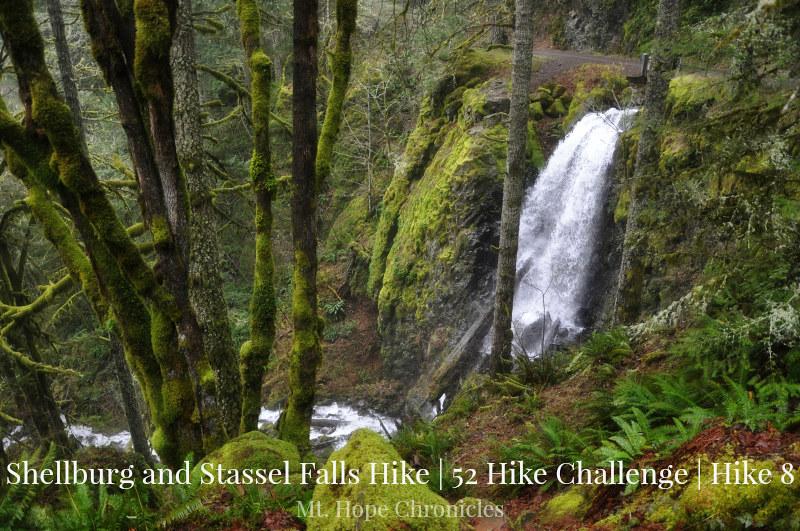 Shellburg and Stassel Falls HIke @ Mt. Hope Chronicles