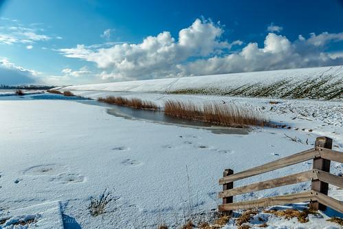 Frozen pond close to Wierum.
