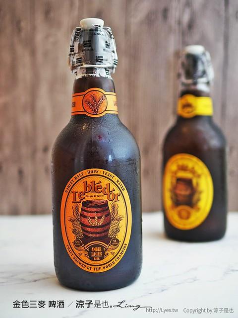 金色三麥 啤酒 6