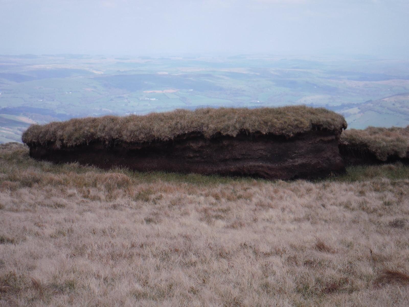 Peat Hag on Fan Gyhirych SWC Walk 307 - Fforest Fawr Traverse (Craig y Nos to Llwyn-y-celyn)