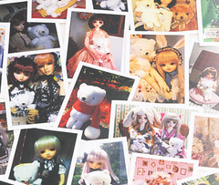 Volks 20th Anniversary