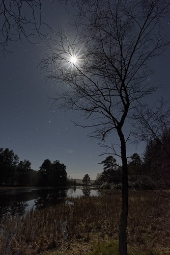 astro astrophotography moon stars moonlight landscape scotland tree night lowlight loch nightscape