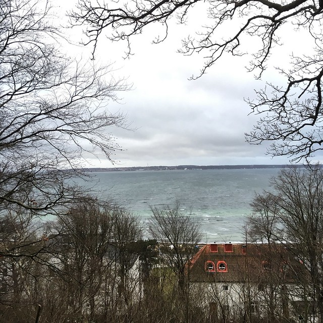 monday, new year's day, walking, helsingborg