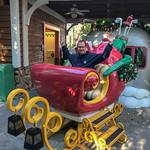 Primary photo for Day 12 - Disney's Animal Kingdom, Magic Kingdom and Winter Summerland Mini Golf