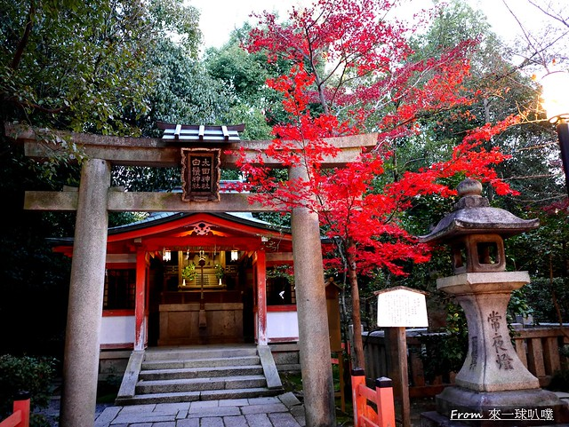 八阪神社25