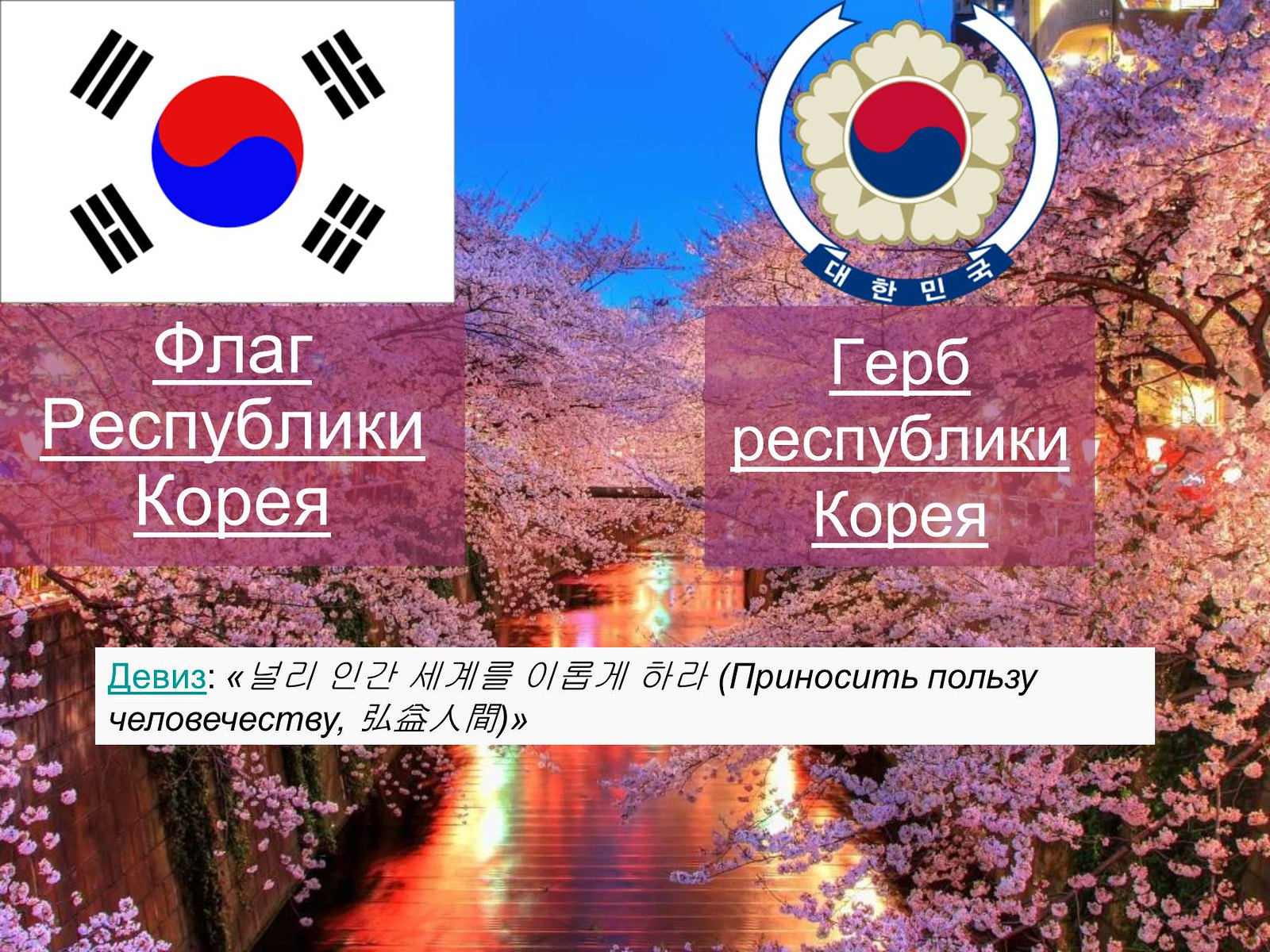 25731453518 c47a7481eb h - Герб Южной Кореи