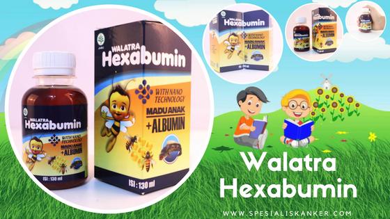 Harga Resmi Herbal Hexabumin