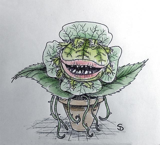 Miss marple drawing challenge : day 3 flower