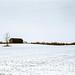 Frozen Farm