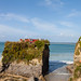 Newquay 29th September 2017 #4
