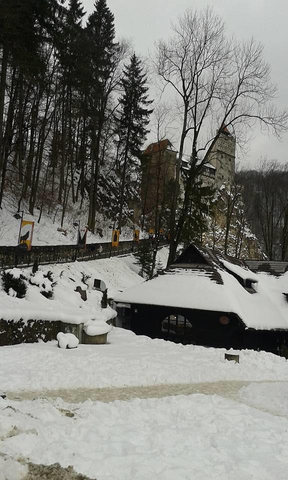 Sfântu Gheorghe - Romania - Volunteering is Active Involvement