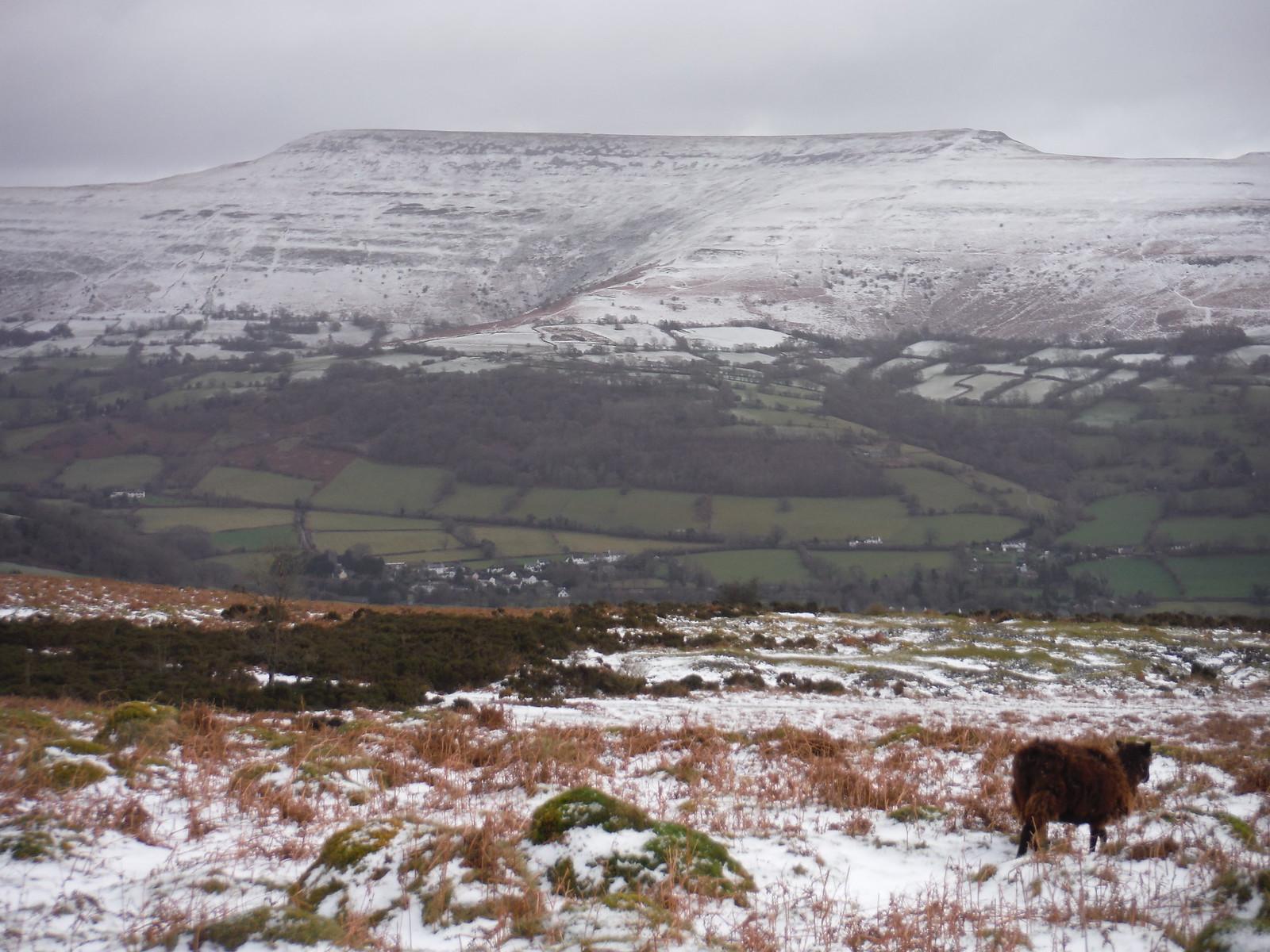 The Black Mountains across the Rhiangoll Valley: Pen Cerrig-calch to Pen Allt-mawr SWC Walk 308 - Bwlch Circular (via Mynydd Troed and Llangorse Lake)