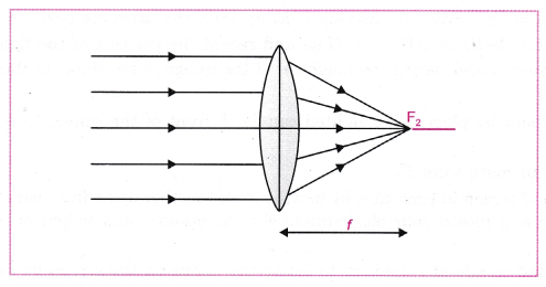 cbse-class-10-science-practical-skills-image-formation-by-a-convex-lens-6