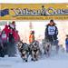 Sat, 02/03/2018 - 12:04 - Yukon Quest 2018 - Julien Schroder