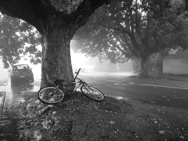 'Bandoned Bike, Panasonic DMC-G10, LUMIX G 20mm F1.7
